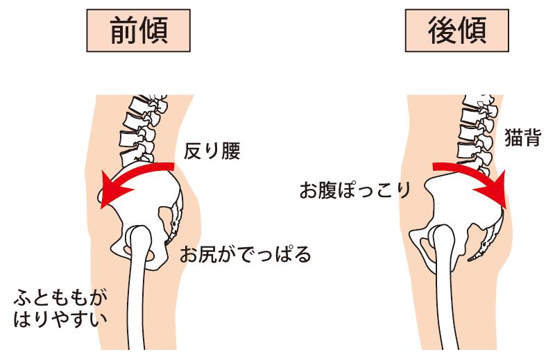 姿勢と骨盤