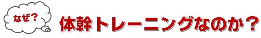 なぜ宝塚で体幹トレーニング(コバトレ)なのか?